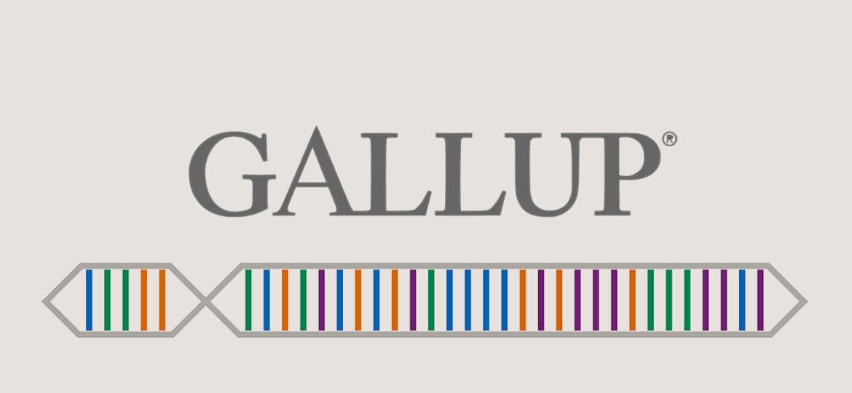 GALLUP-Test